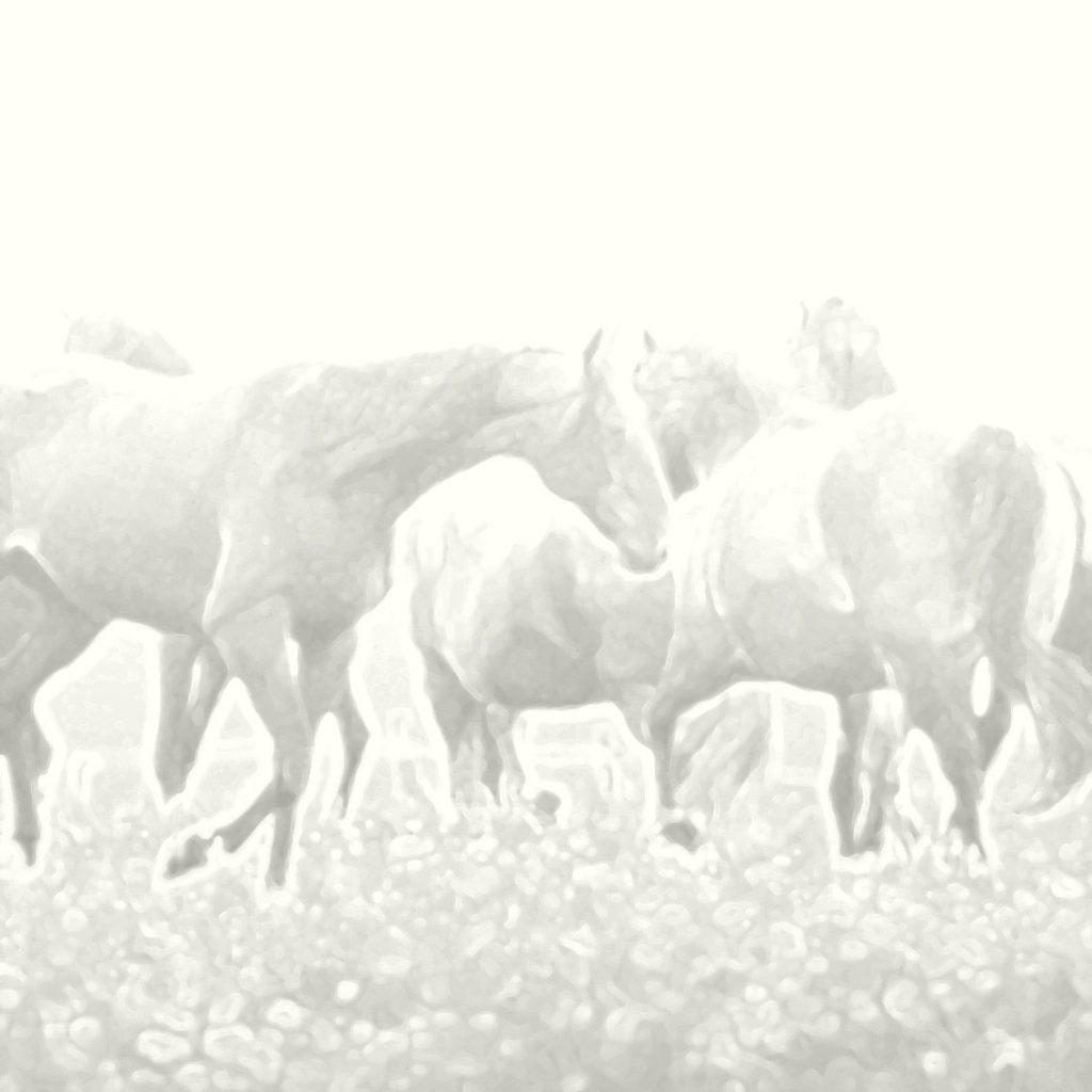Hester på beite, Bakgrunnsbilde