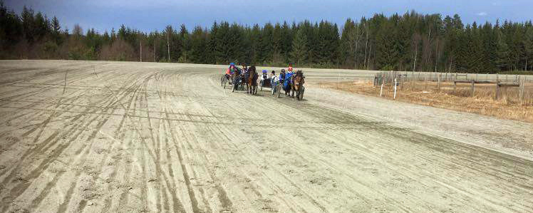 PONNILISENSKURS: Kuskene og ponniene har god plass på 1000-meters banen.