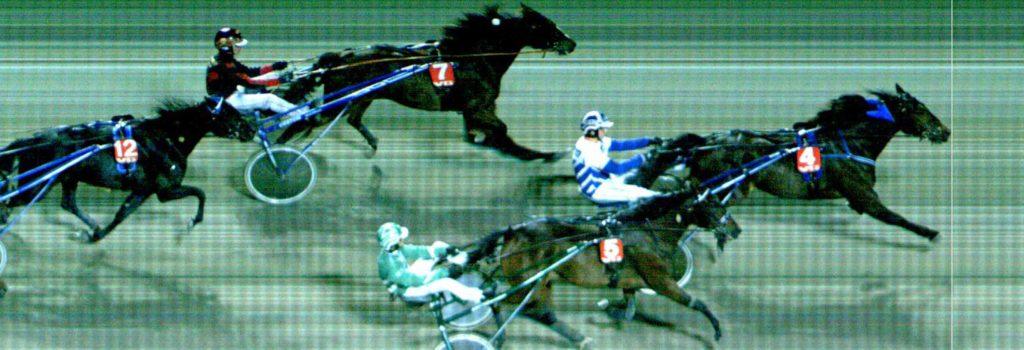 MÅLFOTO: 4 Demerara / Hans Wilhelm Storås vinner foran 5 Louise Challenger / Marius Høitomt og 7 Hearthammer / Dag-Sveinung Dalen.