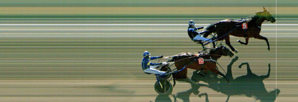 MÅLFOTO: 5 A Winner (DK) / Kai Johansen vinner foran 10 Polymeles Face (S) / Kristian Malmin.